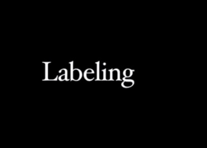 The Lesbian Code - Part 6 - Labeling