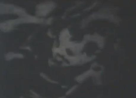 Beloved Murderer (Short Film)